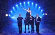 Gala de l'Union des Artistes 2012