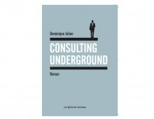 Consulting Underground – Roman de Dominique Julien